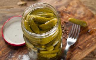 Как вкусно мариновать огурцы на зиму: секреты маринада и способы консервации