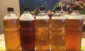 Сколько и как храниться разливное пиво: срок годности и правила хранения