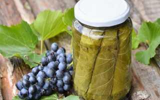 10 рецептов заготовки листьев винограда для долмы на зиму