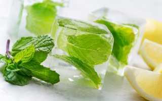 Можно ли замораживать мяту и как — ТОП 6 простых способов сохранить растение