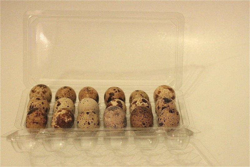 перепелиные яйца в холодильнике