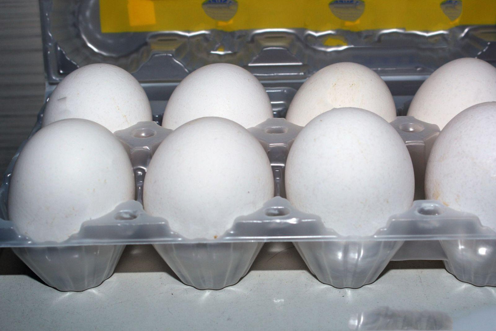 Укладка яиц в контейнере